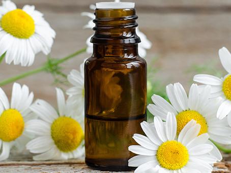 Essential Oils:Chamomile Roman Oil