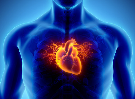 IS THERE A LINK BETWEEN RED MEAT AND HEART DISEASE