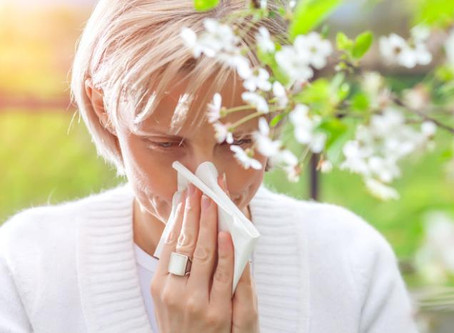 Probiotics can be beneficial for Hay fever symptoms