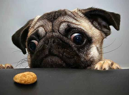10 Ways To Stop Food Cravings