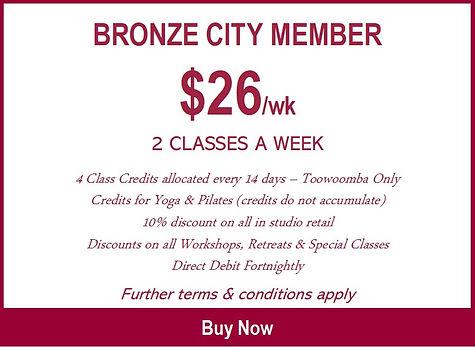 bronze city member.jpg