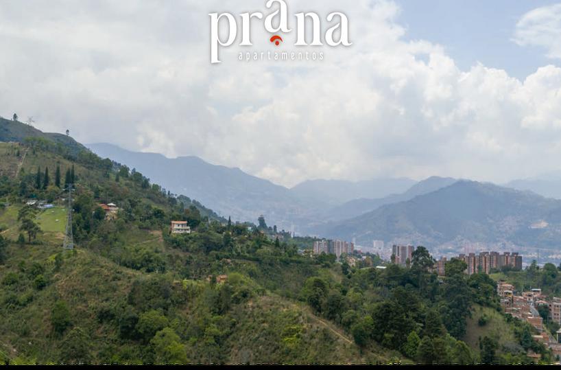 Prana-16.png