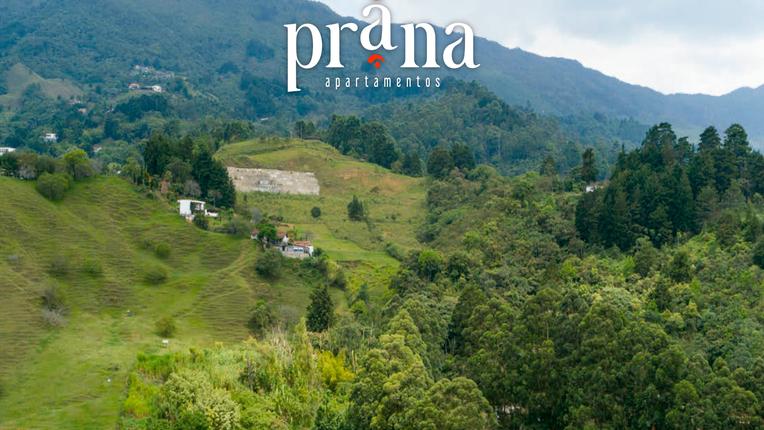 Prana-15.png