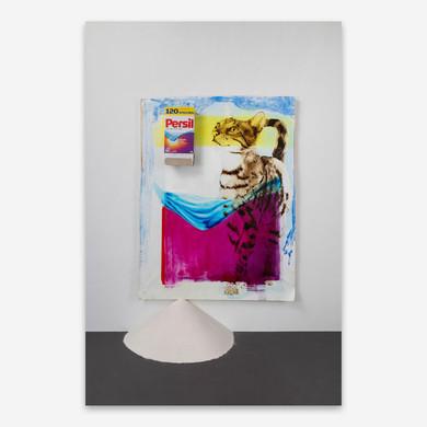 Sebastian Maas, Clean Cat, 2020