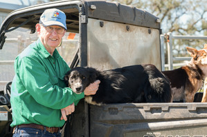 FROM FINANCE TO FARMING - Murray's business edge