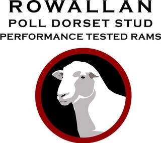 Rowallan Stud 1 logo.jpg