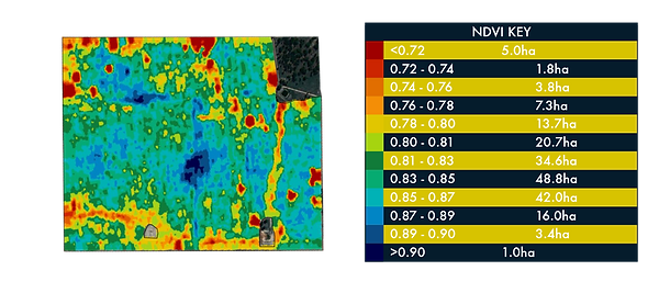 NDVI Imagery.png