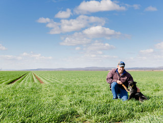 Ronald family's innovative approach to crop growth