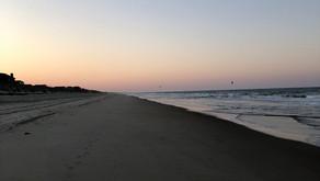 Camus and a deserted beach