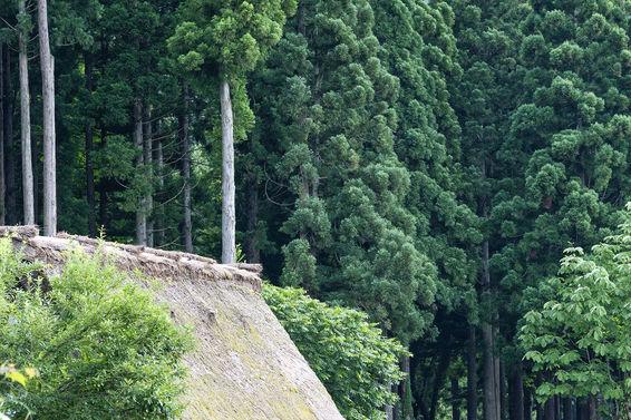 Shirakawa-gō, Japon