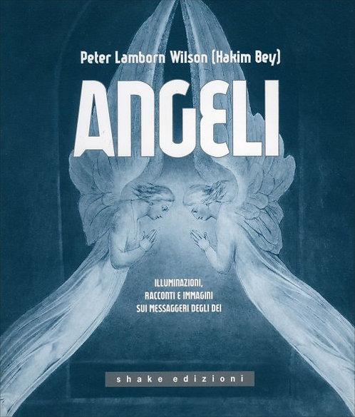 ANGELI. Peter Lamborn Wilson