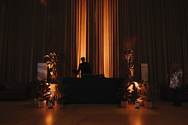 DJ Royale solo in Great Stair Hall.jpg