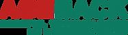 AGEBACK tech logo 03.png