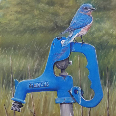 """1st Place """"Country Bluebird"""""""