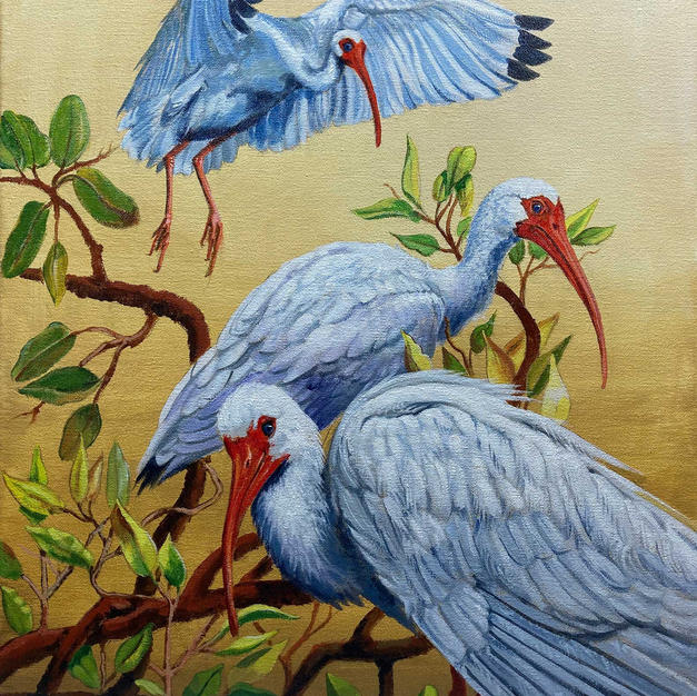 """Tree Tops with Ibis"""