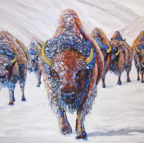 """3rd Place """"Winter Bison"""""""
