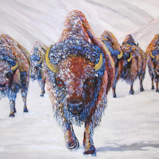 """Winter Bison"""