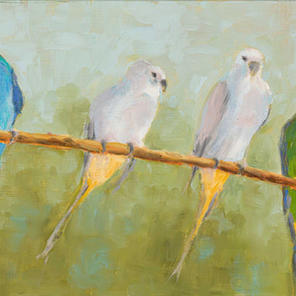 """""""Parrots On Branch"""""""