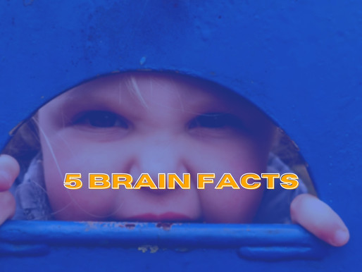 5 facts, the brain & happiness
