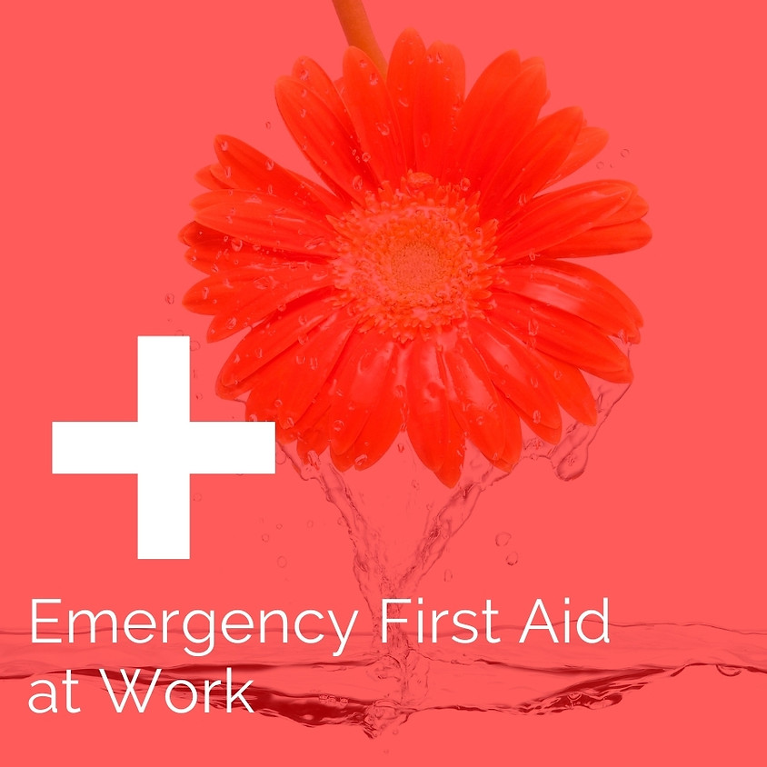 Emergency First Aid at Work (EFAW) at SO Coach on the 30th November