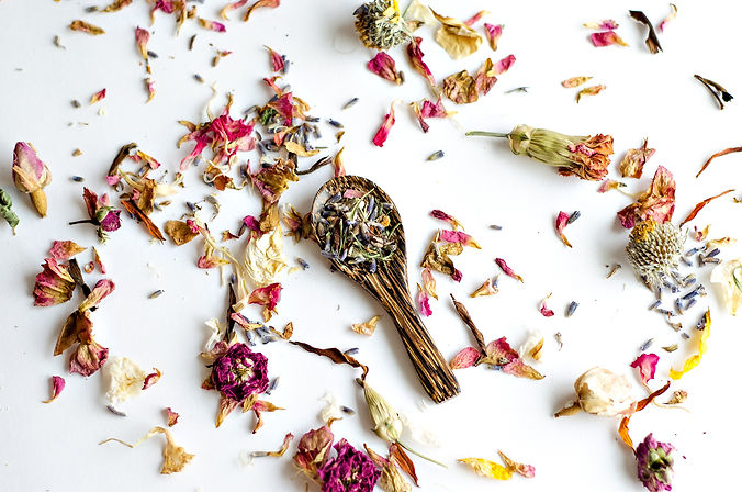 Dried Flowers and herbs on white backgro