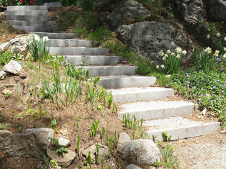 Too many steps!  Or why we need the Senior Affordable Housing Bond...