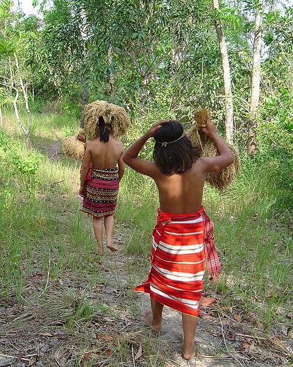 IAT_Kalinga_girls_with_harvested_rice_ed