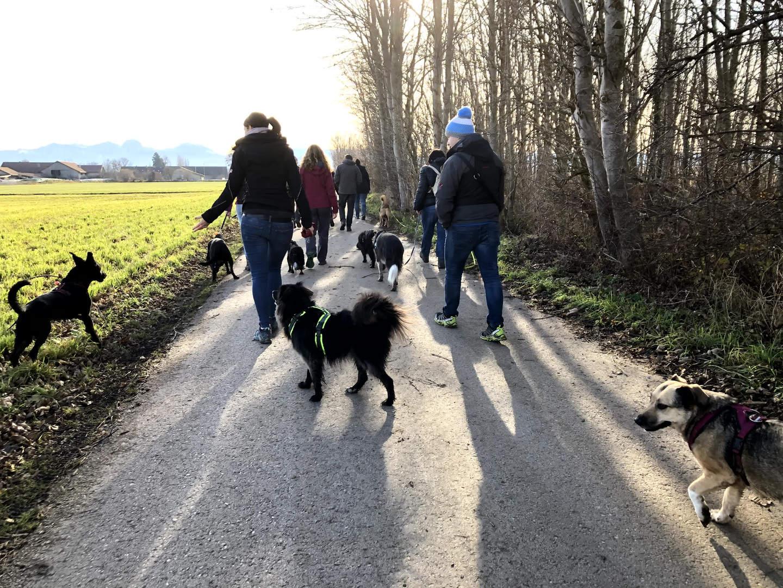 Impressionen vom Charity Walk