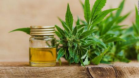171106112212-marijuana-cbd-buy-online-st