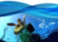 cartaz webA.jpg