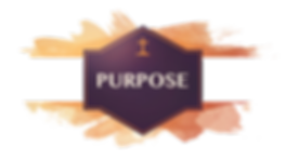 Purpose image website.png