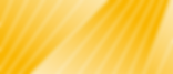 yellow_shape-site1-06.png