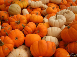 Superfood for Your Skin, Pumpkin-Style