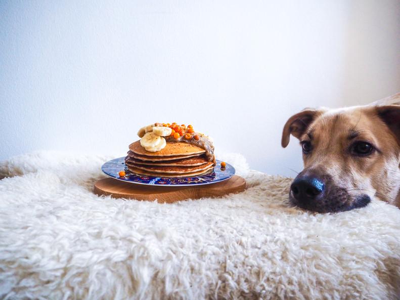 GLUTEENITTOMAT JA VEGAANISET PANNUKAKUT / Gluten-free & Vegan Pancakes