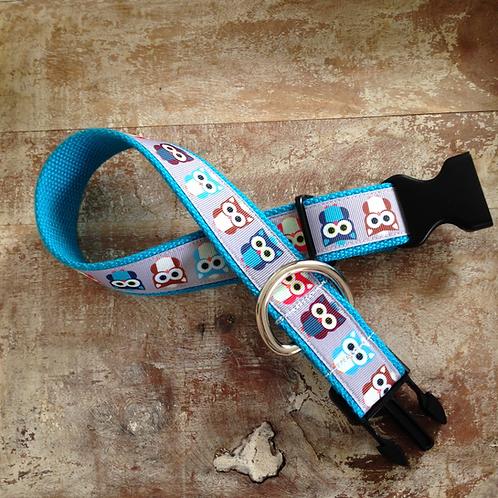 1 1/4 inch Owl Friends Dog Collar or Leash