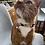 Thumbnail: Breakfast Buddies Cat Collar