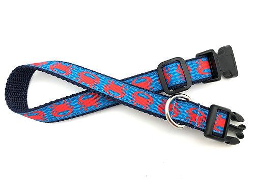 Coral Crab Wave Chevron Dog Collar & Leash