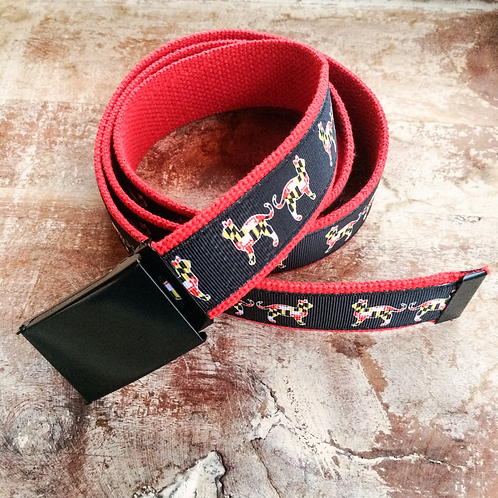 Maryland Cat Belt