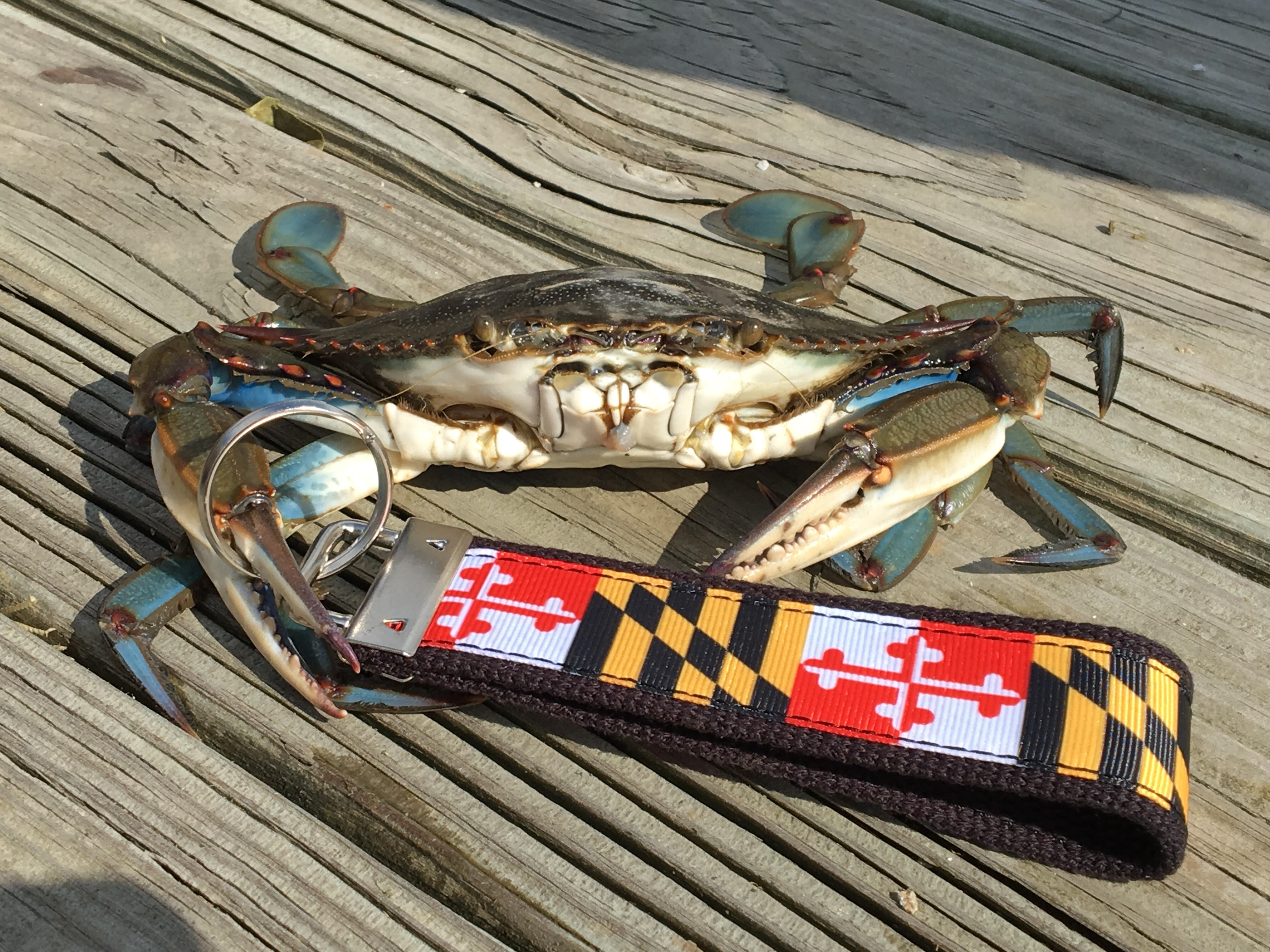 Maryland Flag Keychain