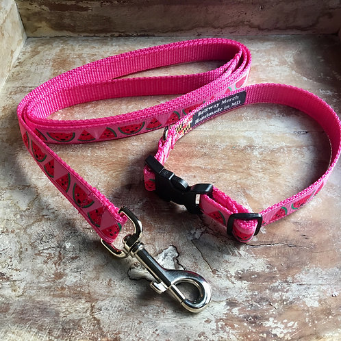 Watermelon Dog Collar & Leash