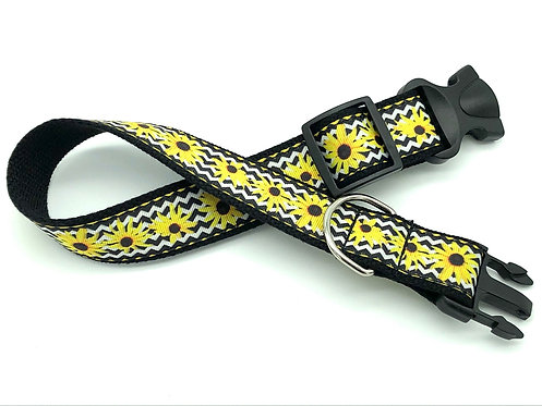 Black-Eyed Susan Dog Collar & Leash