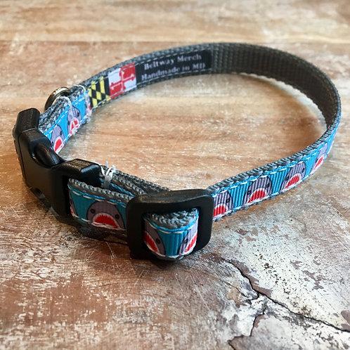 Shark Dog Collar & Leash