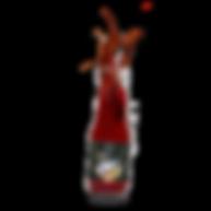 Ritonka Ketchup kids screen kl.png