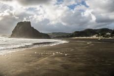 Piha Beach North Island, New Zealand
