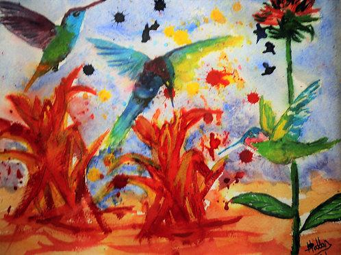 Indian Paintbrush Hummingbirds