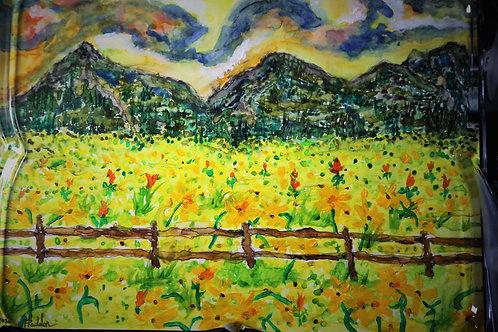 Salida Sunflowers