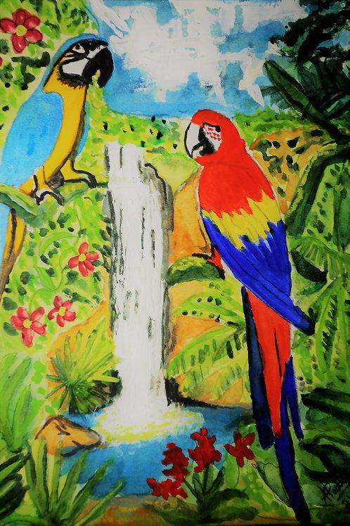 Macaw Jungle