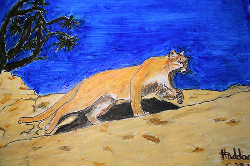 Mountain-Lion-Zion