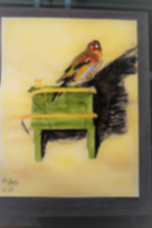 goldfinch framed.JPG