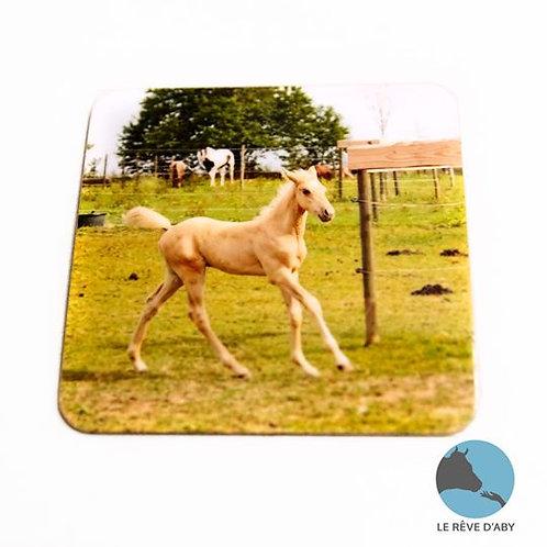 Magnet photo Aston